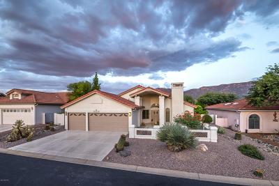 Saddlebrooke Single Family Home For Sale: 37471 S Desert Star Drive