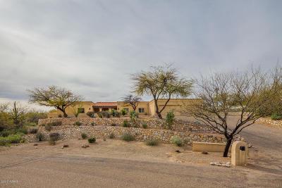 Tucson AZ Single Family Home For Sale: $699,000