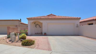 Pima County Single Family Home For Sale: 4935 S View Ridge Drive