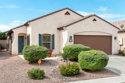 Sahuarita Single Family Home For Sale: 873 W Calle Muro Fuerte