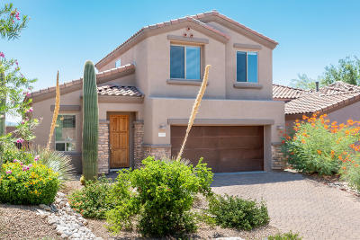Pima County, Pinal County Single Family Home For Sale: 5716 N Loft Lane