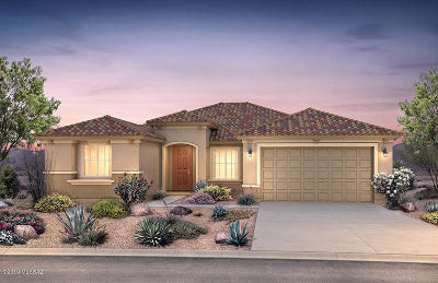 Pima County Single Family Home For Sale: 8753 N Big Ben Lane