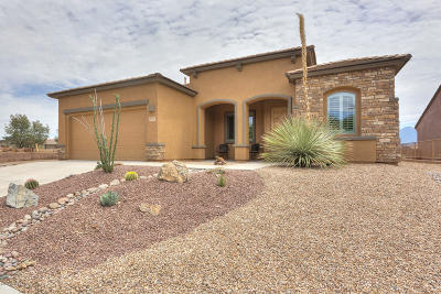 Green Valley Single Family Home For Sale: 5541 S Fissure Peak Drive