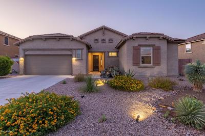Tucson Single Family Home For Sale: 60646 E Eagle Ridge Drive
