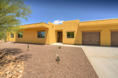 Tucson Single Family Home For Sale: 3044 N Soldier Trail