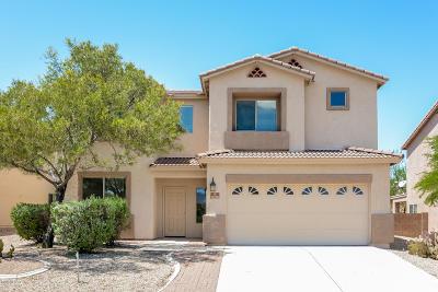 Pima County Single Family Home For Sale: 8208 S Placita Almeria