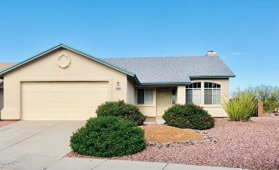 Pima County Single Family Home For Sale: 8927 N Soft Winds Drive