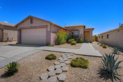 Tucson Single Family Home For Sale: 10038 E Deer Trail