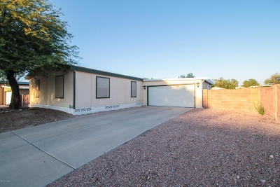 Pima County Single Family Home For Sale: 7237 S Badger Canyon Drive