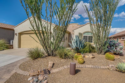 Sahuarita Single Family Home For Sale: 752 W Camino Del Rosal
