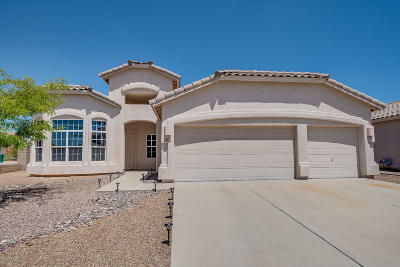 Tucson Single Family Home For Sale: 2660 W Nature Point Court