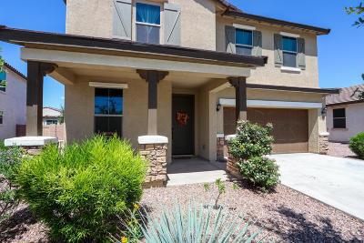 Tucson Single Family Home For Sale: 6643 E Via Boca Chica
