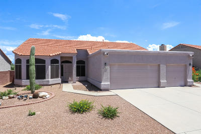 Tucson Single Family Home For Sale: 971 S Avenida Los Reyes