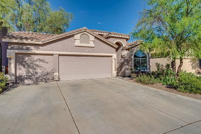 Sahuarita Single Family Home For Sale: 14991 S Theodore Roosevelt Way