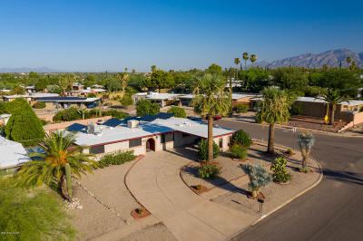 Tucson Single Family Home For Sale: 2922 S Hearthstone Drive