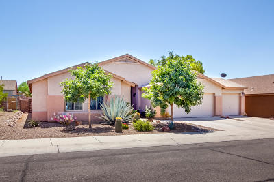 Pima County Single Family Home For Sale: 8340 N Freshwater Lane