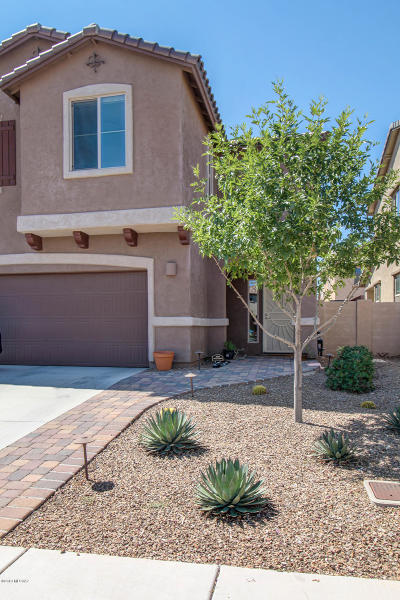 Sahuarita Single Family Home For Sale: 693 W Calle Canto Sereno