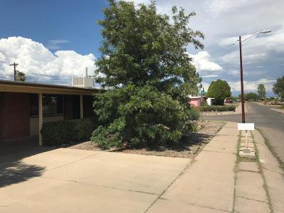 Tucson Single Family Home For Sale: 7333 E 29th Street