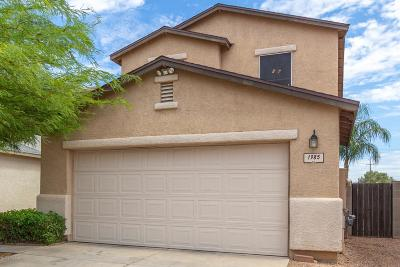 Pima County Single Family Home For Sale: 1985 S McConnell Drive