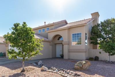 Pima County Single Family Home For Sale: 8231 S Via Elemental