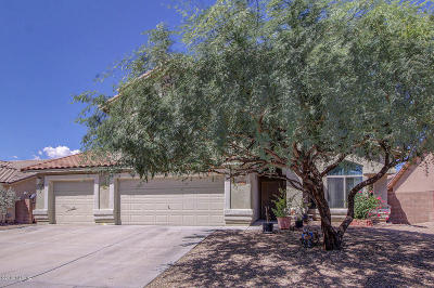 Tucson Single Family Home For Sale: 6530 W Cedar Branch Way