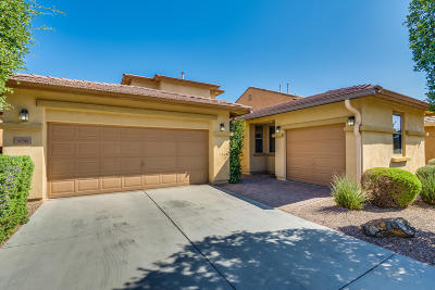 Pima County Single Family Home For Sale: 636 W Camino Tunera