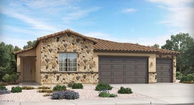Marana Single Family Home For Sale: 12135 N Candywine Drive N
