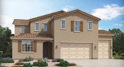 Marana Single Family Home For Sale: 12125 N Candywine Drive N