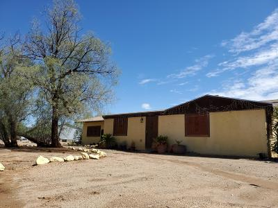 Tucson Single Family Home For Sale: 4141 S Bantry Lane