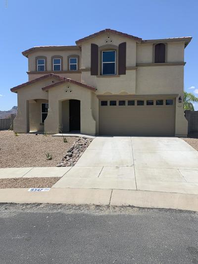 Pima County Single Family Home For Sale: 9347 N Red Diamond Avenue
