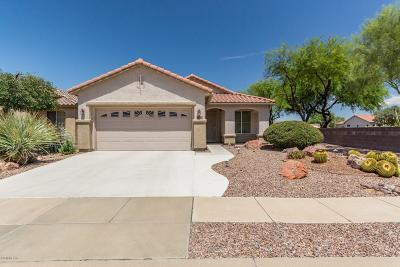 Tucson Single Family Home For Sale: 7706 W Starry Night Lane