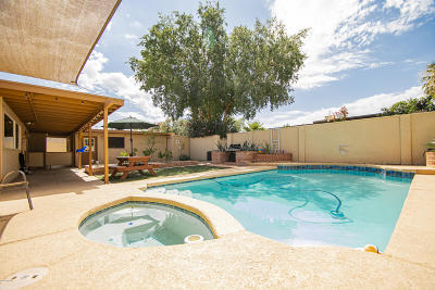 Tucson Single Family Home For Sale: 8712 E 7th Street
