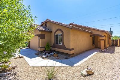 Sahuarita Single Family Home For Sale: 491 W Calle Paso Suave