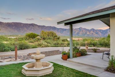 Tucson Single Family Home For Sale: 16061 N Sotol Avenue
