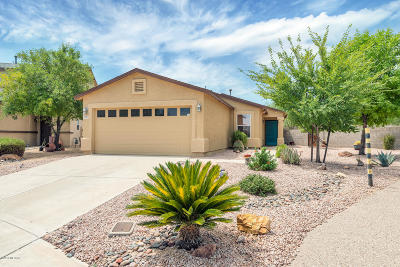 Sahuarita Single Family Home For Sale: 1365 W Calle Libro Del Retrato