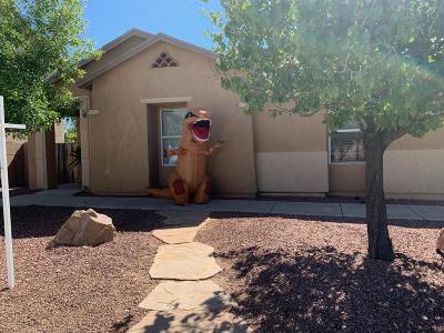 Tucson Single Family Home For Sale: 10206 E Honey Mesquite Drive