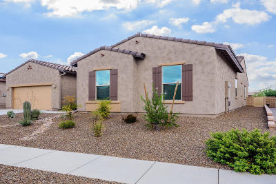 Marana Single Family Home For Sale: 4341 W Summit Ranch Place