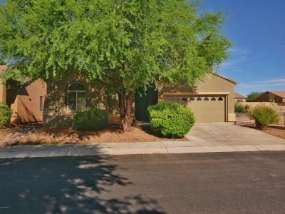 Green Valley Single Family Home For Sale: 5840 S Painted Canyon Drive