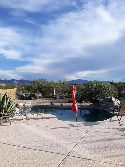 Vail Single Family Home Active Contingent: 9054 E Mesquite View Place