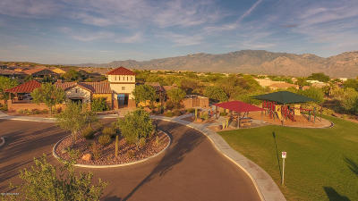 Oro Valley Single Family Home For Sale: 993 W Golden Barrel Court