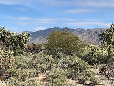Residential Lots & Land For Sale: 10550 E Old Spanish Trail