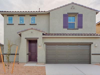 Marana Single Family Home For Sale: 10707 W Hayward Drive