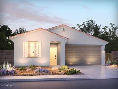 Marana Single Family Home For Sale: 10701 W Hayward Drive