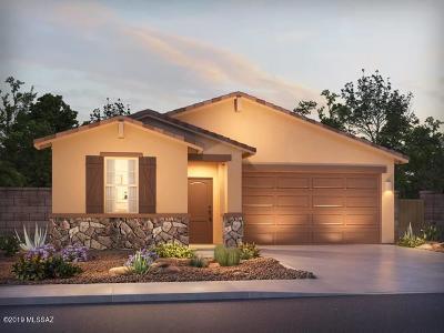 Marana Single Family Home For Sale: 10695 W Hayward Drive