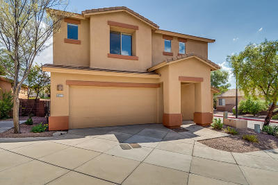 Tucson Single Family Home For Sale: 3490 N Paseo De San Agustin
