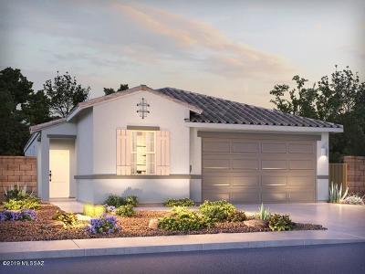 Marana Single Family Home For Sale: 10722 W Hayward Drive