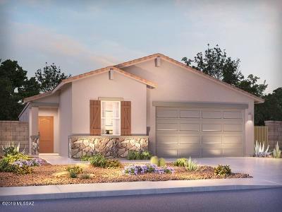 Marana Single Family Home For Sale: 10740 W Hayward Drive