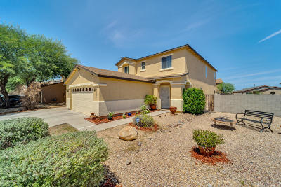 Sahuarita Single Family Home For Sale: 1112 W Camino Luna Llena