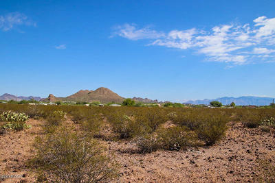 Residential Lots & Land For Sale: 3910 W Hermans Road