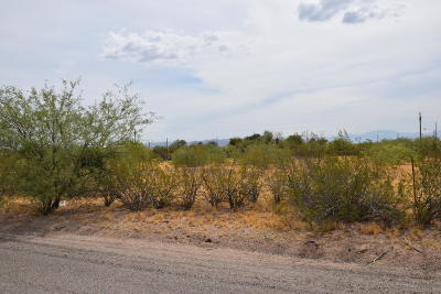 Residential Lots & Land For Sale: 12500 N Avenida Saturno